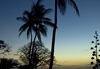 [Crown Point Tobago - Link to Sunsets & Dawns]